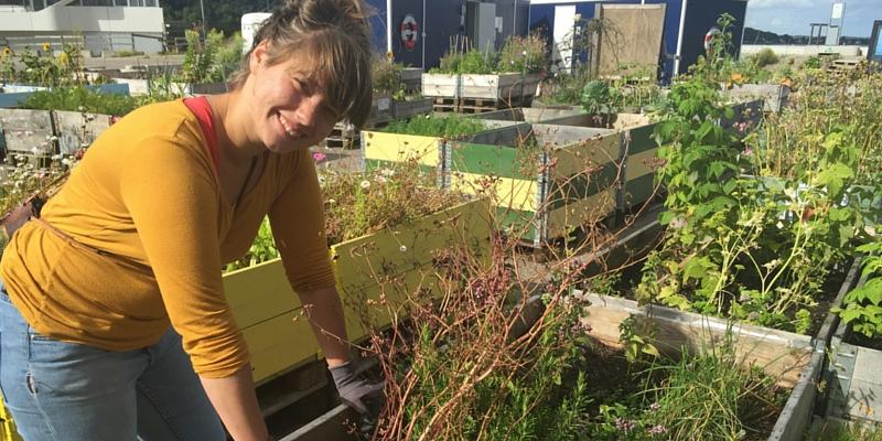 Agnete Simonsen dyrker grøntsager i en pallekasse på Aarhus havn. Ø-haven. Selvforsyning.