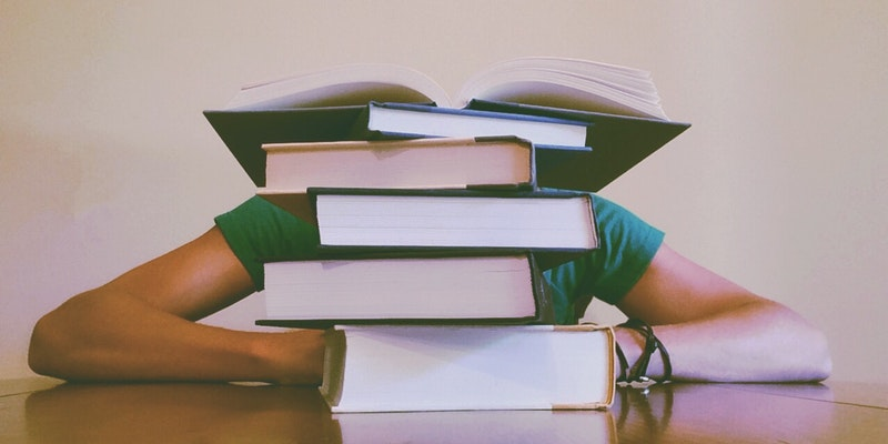 bøger udlandsophold fremdriftsreform