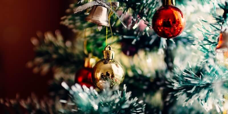 Bæredygtigt juletræ